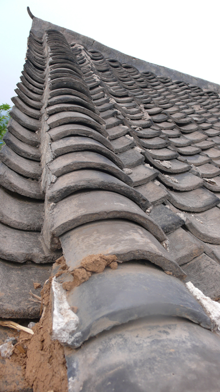 roof tiles on traditional house