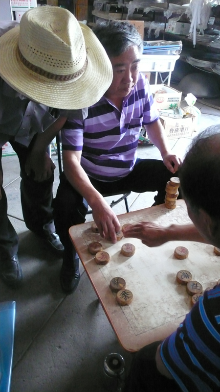 game of chinese checkers
